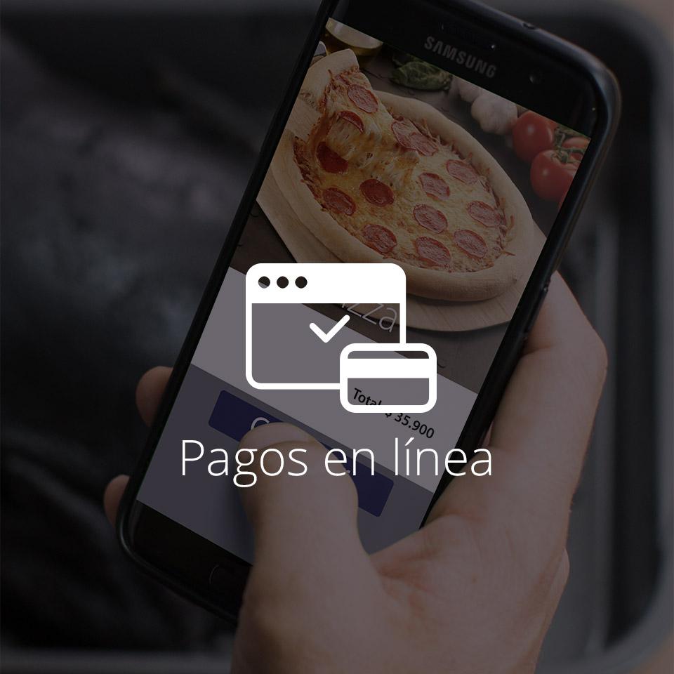 VISA   Pagos en línea